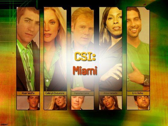 CSI-Miami-csi-miami-5478414-1024-768